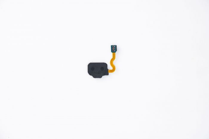 Fingerprint Scanner Flex Cable for use with Samsung Galaxy S8 (Orchid Gray)